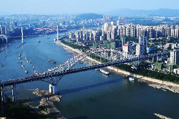 Chinas Chongqing FTZ sees booming market entity registrations