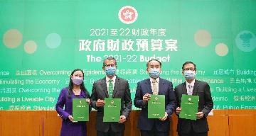 """香港新年度財政預算案:""""希望""""的顏色"""