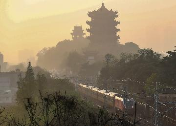Central Chinas Wuhan to build 80 wetland parks over 5 years