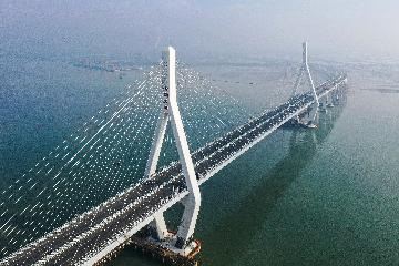 Chinas investment in Greater Bay Area to pay off handsomely: expert