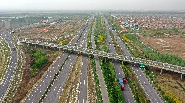 Chinas Ningxia reports surging foreign trade in Jan.-July