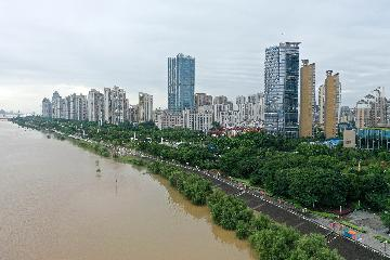 Foreign trade of east Chinas Jiangxi up 11.6 pct in Jan.-July