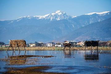 Cross-border RMB business grows in Chinas Yunnan