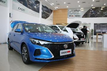 Chinas auto sales up 13.7 percent in Jan.-Aug.