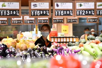 Chinas CPI up 0.7 pct in September