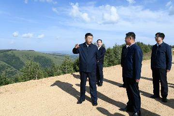 Xi stresses developing green economy, furthering ecological progress