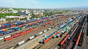 Chinas Xinjiang sees foreign trade jump in Jan-July